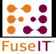 FuseIT Icon